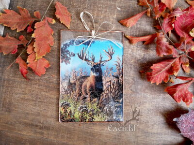 �тъклена картичка � елен