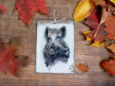 картичка с диво прасе